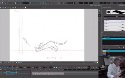 Cat Animation Exercise 1 – Cameron Johnson